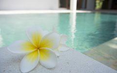 Get to know Tamarind Spring Spa in Koh Samui, Thailand