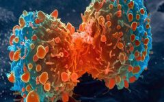 """Comprehensive Genomic Profiling"""" a new hope for cancer patients"""